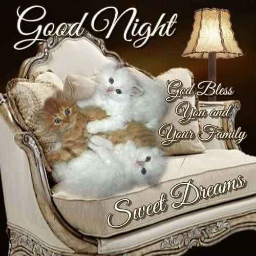 Good Night -- God Bless You and Your Family -- Sweet Dreams