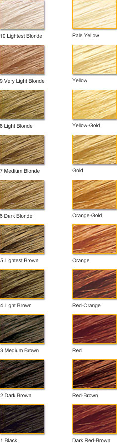Hair Color Theory Clairol Professional Natural Levels And Contributing Pigments