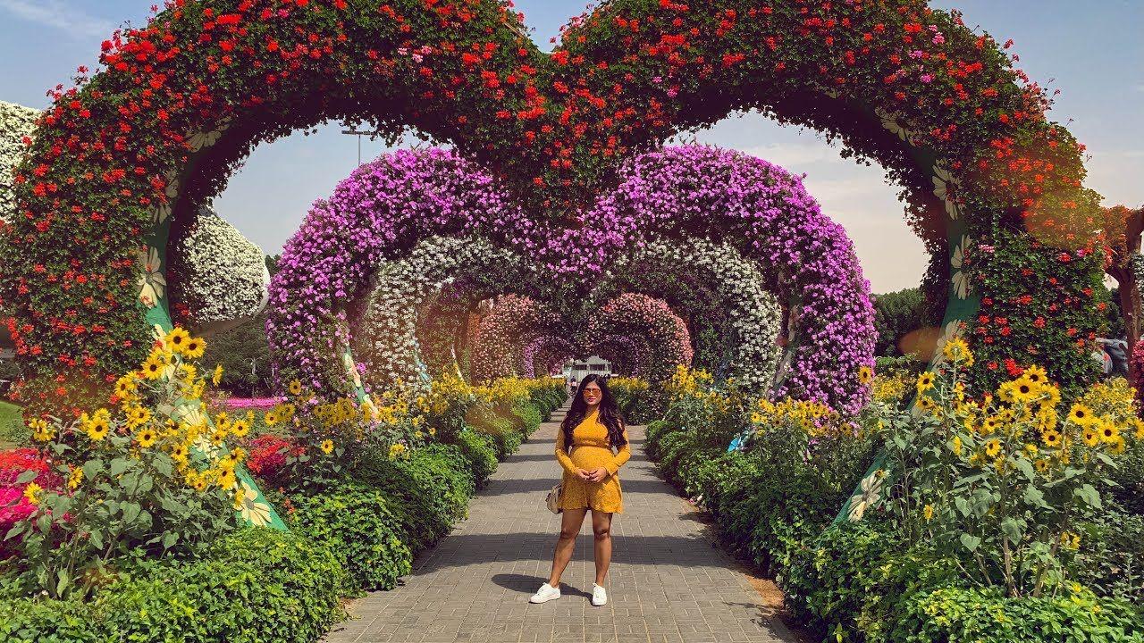 Miracle Garden Dubai 2019 World's Largest Natural Flower