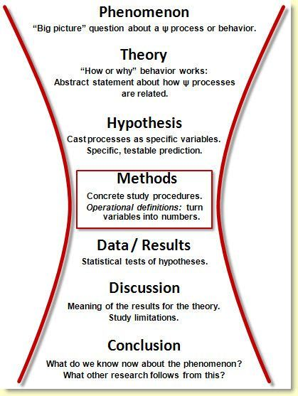 Social psychology essay structure