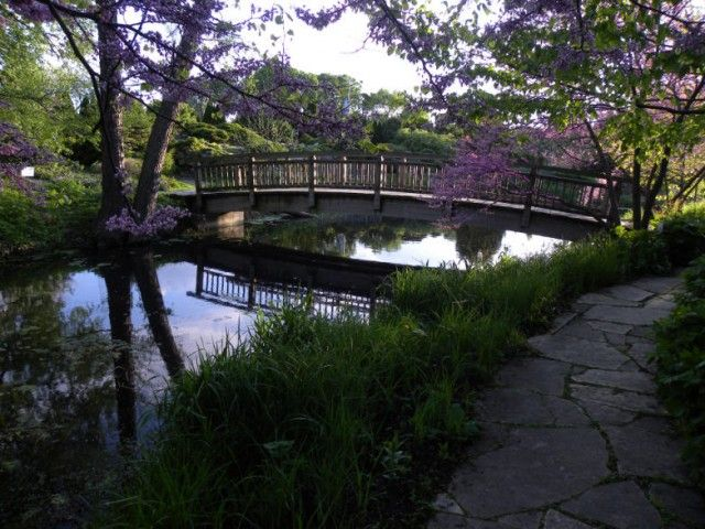 Footbridge To Rock Garden Olbrich Botanical Gardens Madison Wisconsin Arboretums