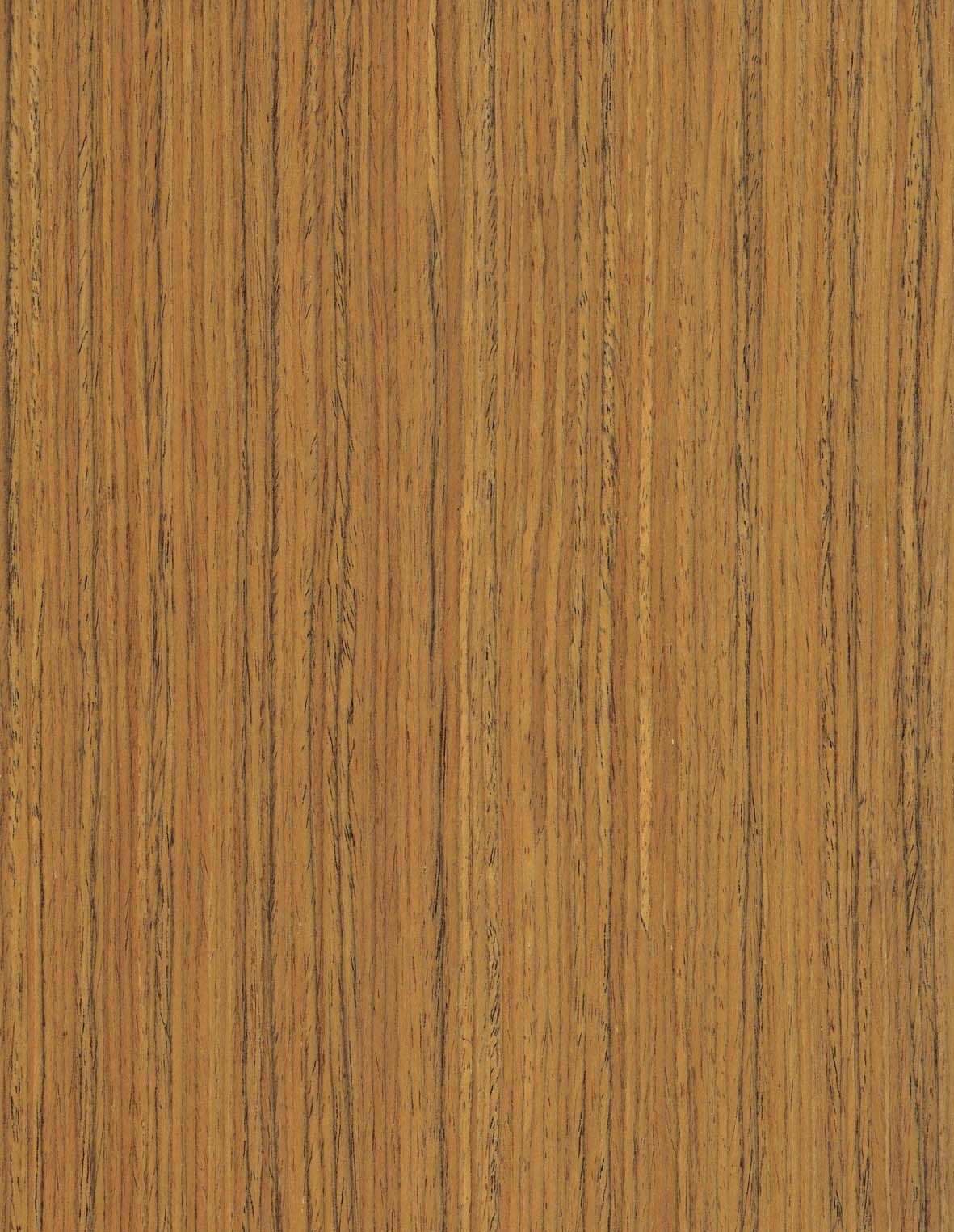 TEAK by Abodian Happy Forest ™ doors and panels - Abodian ...
