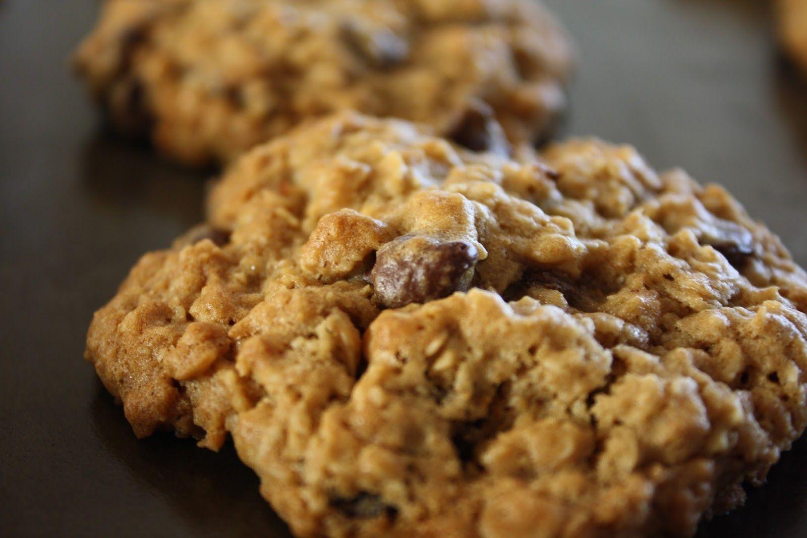 Peachy Keen Mumma Soft Amp Chewy Oatmeal Chocolate Chip