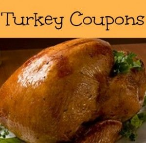 graphic about Butterball Coupons Turkey Printable named Butterball Turkey Discount codes: $3 Off Printable Coupon