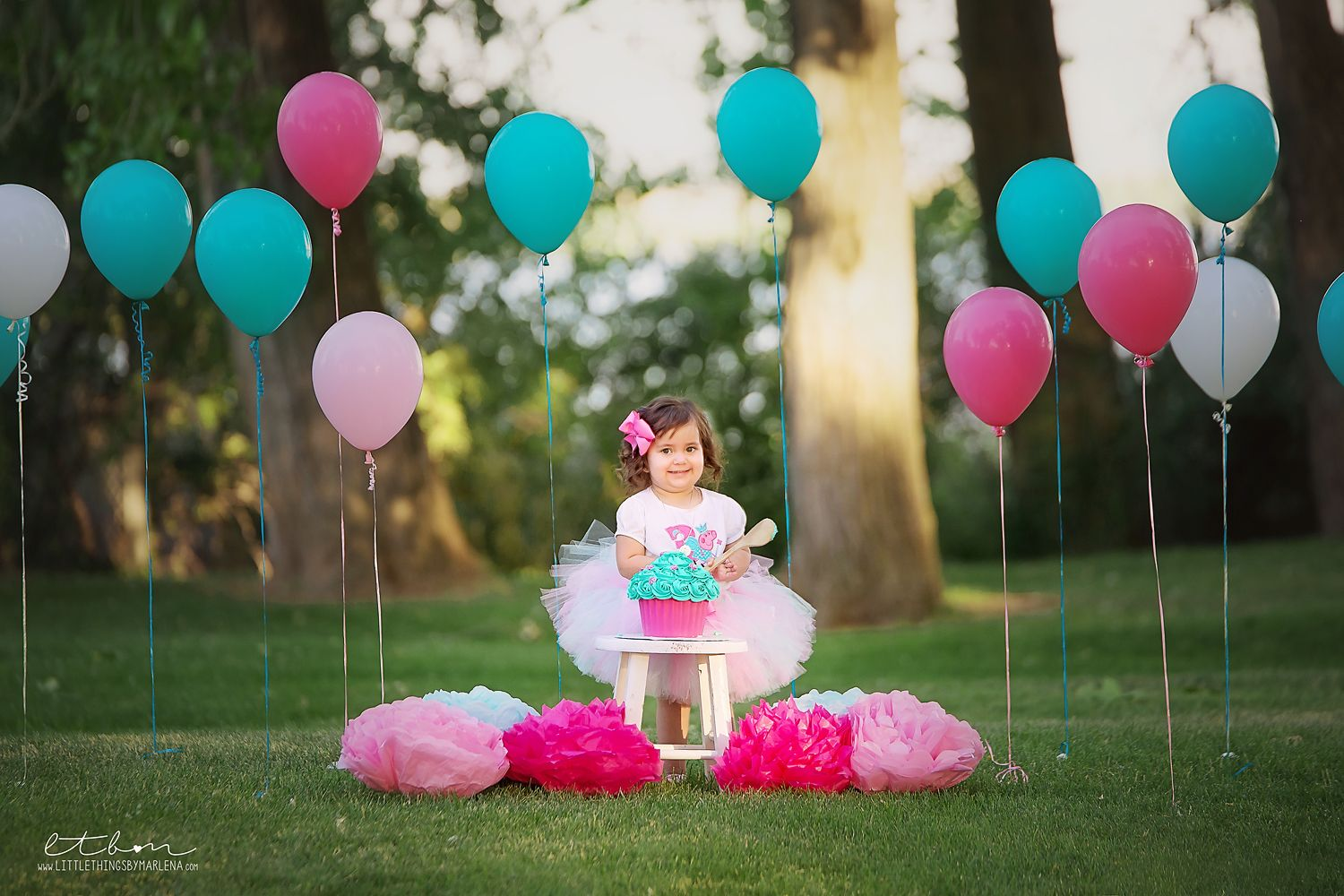 Cake Smash Peppa Pig Teal Pink White Outdoor Photo Session