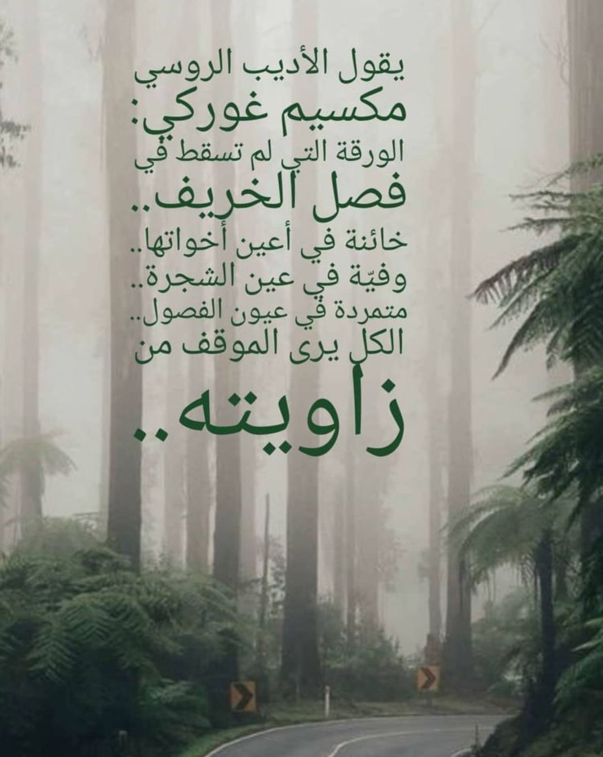 Pin By Drsuzanna Kamel On It S Me Cool Words Wisdom Quotes Arabic Quotes