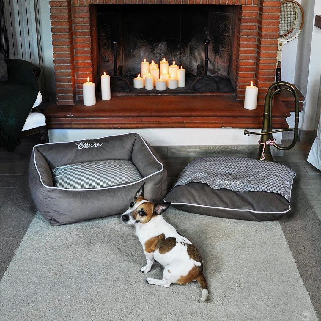 Scegliendo una cuccia Personal Dog avrai la possibilità di personalizzarla con il nome ricamato del tuo miglior amico  #PersonalDog #GretaandPants #lovelydog #jackrussell #igersdog #coccole #cuccia #luxurydogbed #personalizeddogbed #doglovers  #igersitalia  #ig_tuscany #igerstoscana #picoftheday #photooftheday #dog #dogs #dogbed #madeinitaly #igersdog #dogcollar #dogharness #dogleash by personal_dog15