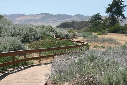 Beach Boardwalk Area At Grover