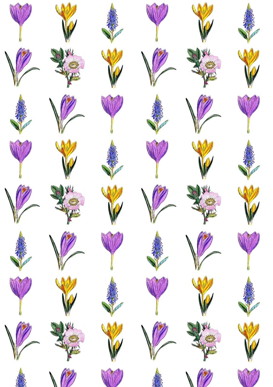 Free Digital Floral Scrapbooking Paper