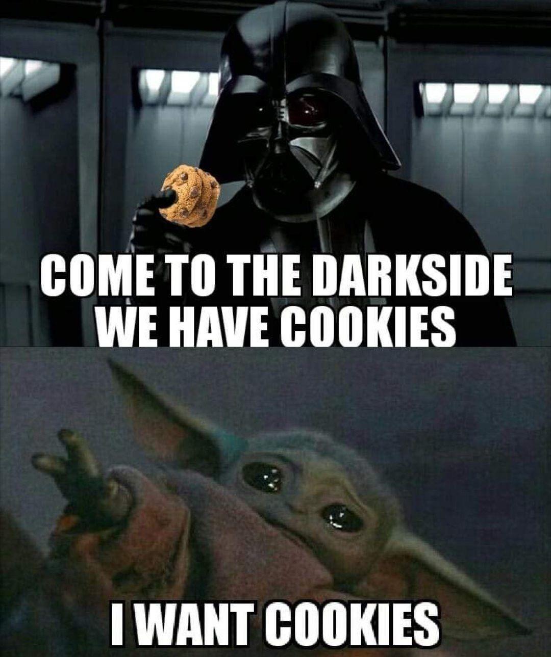 Cookies I Want Yoda Funny Funny Star Wars Memes Yoda Images