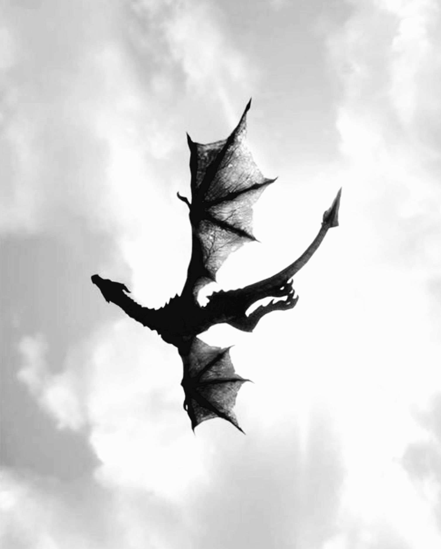 Pin by khyssa on hadassirenas y dragones pinterest dragons looks like it was done with just ink and brush like japanese writing very much how i see aerial balletic dance of my fendellin fyrrens against buycottarizona