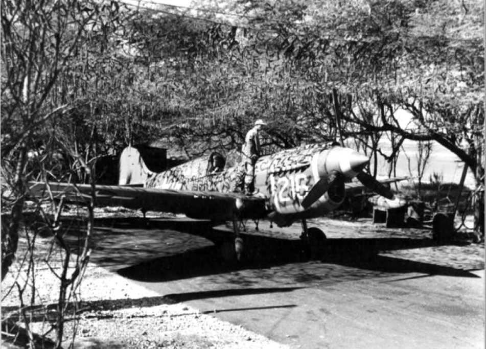 Haleiwa fighter strip-4759