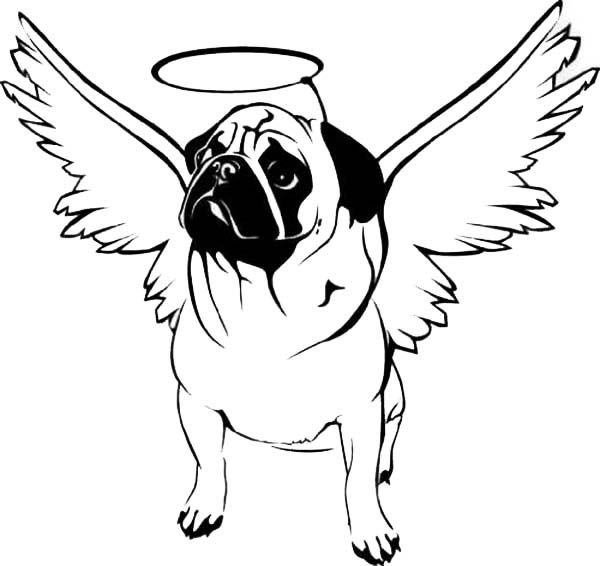 Pug coloring pages animal coloring pages pinterest for Cute pug coloring pages