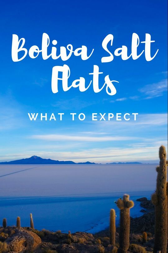 An Honest Review Of The Cruz Andina Bolivia Salt Flats Tour