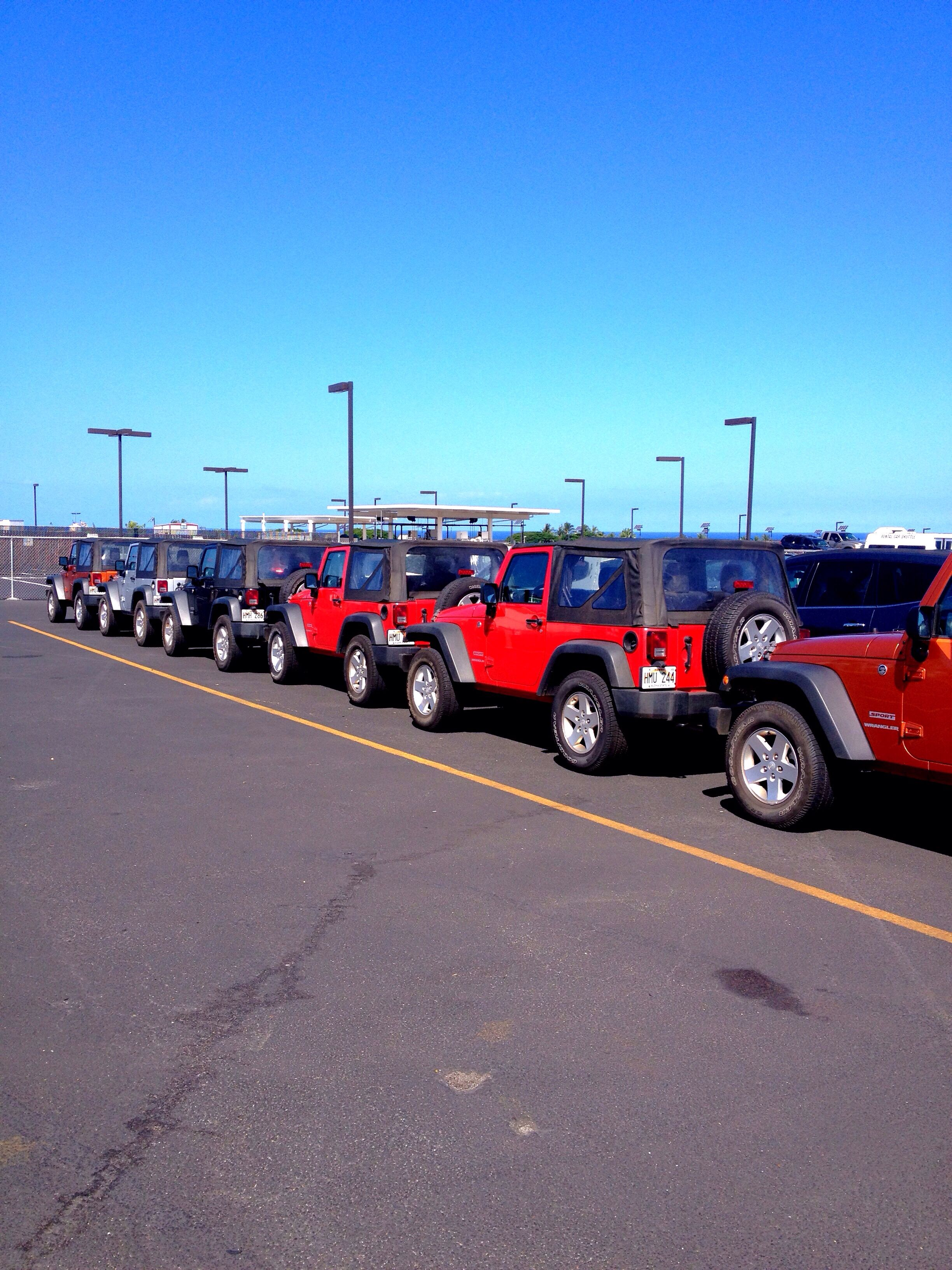 Line up of jeep wranglers for rent thrifty car rental kona