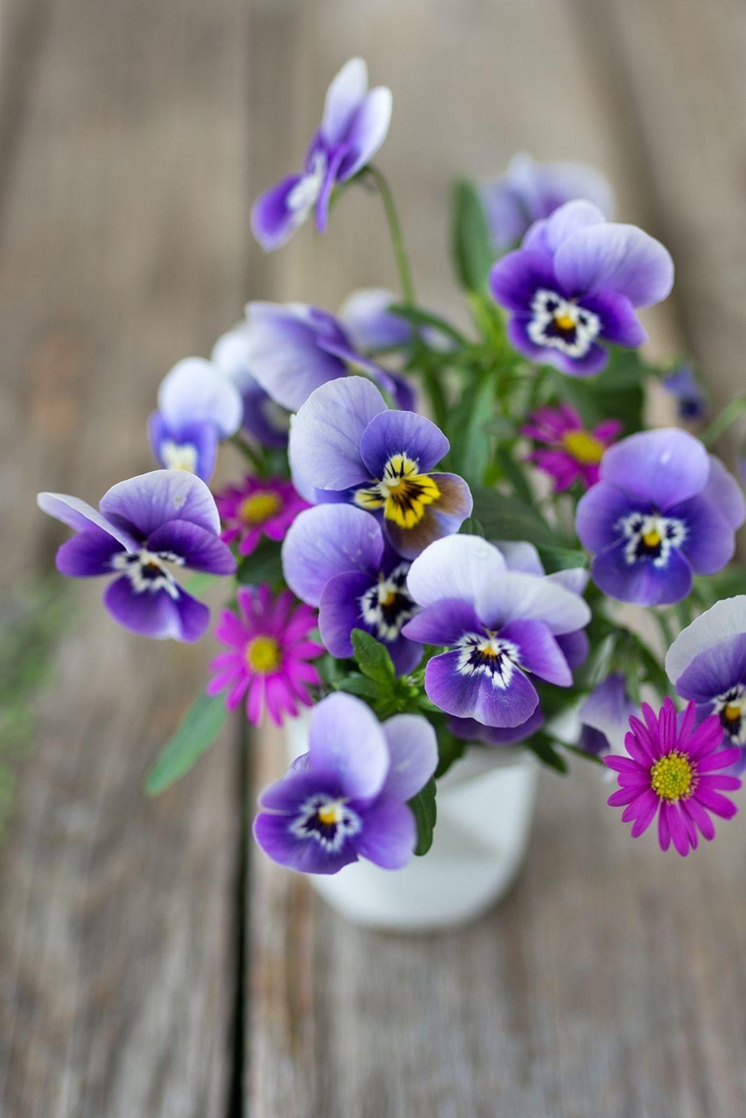 So trocknest du einfach und schnell Blumen in 2 Minuten!