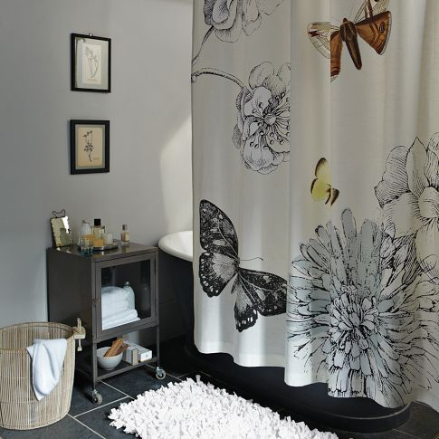 Butterfly Shower Curtain Nature Study Intricately Rendered