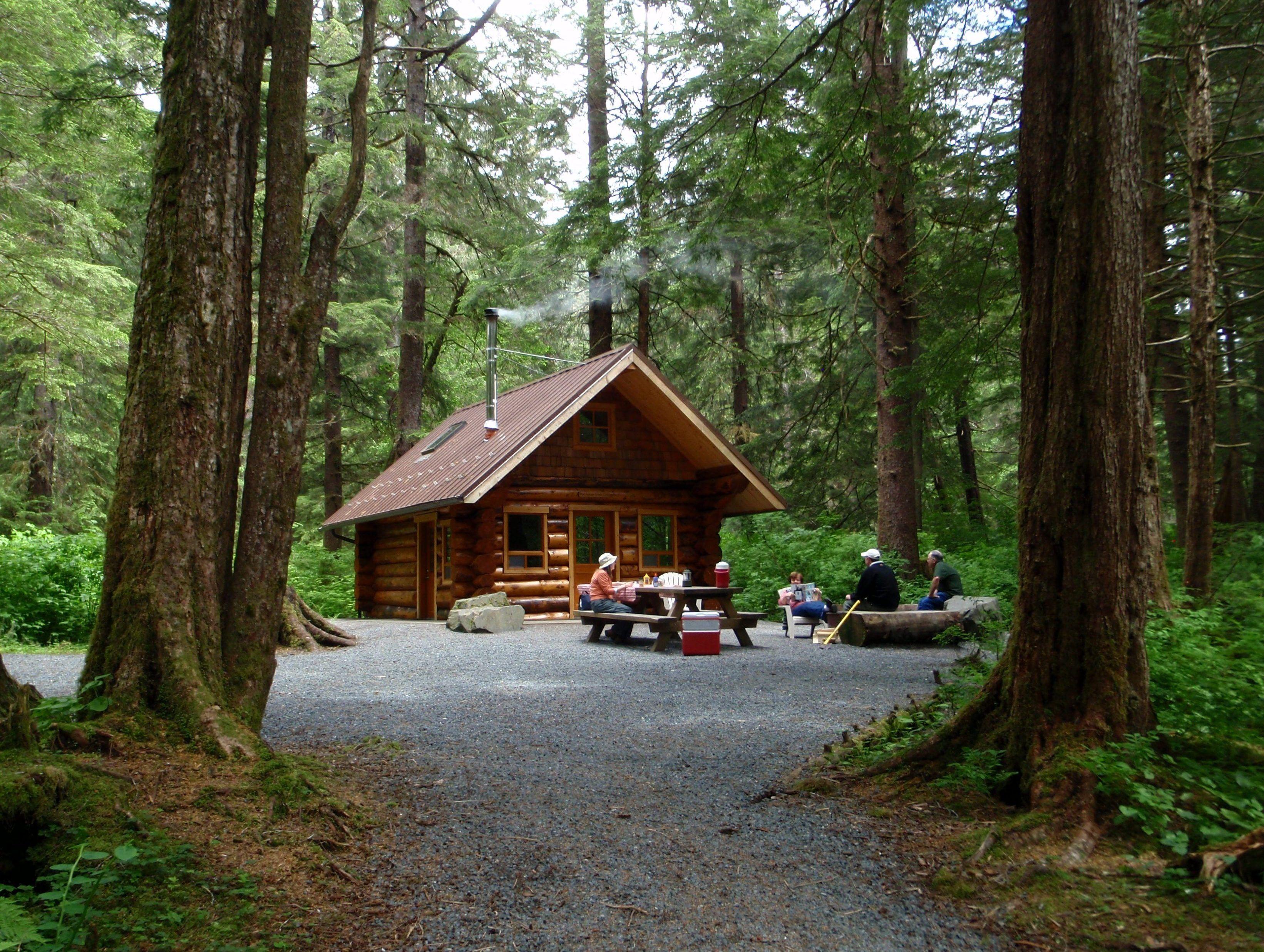 cabin home decor 827 best log cabin images on pinterest log