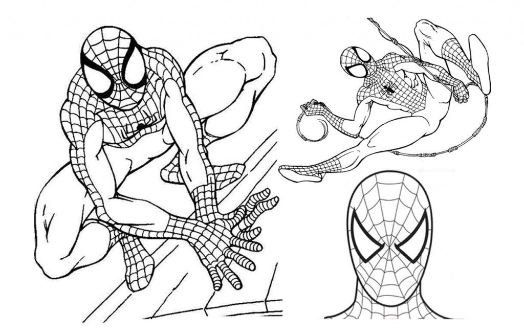 Spiderman All Face Coloring Spiderman Coloring Cool Coloring Pages Pokemon Coloring Pages