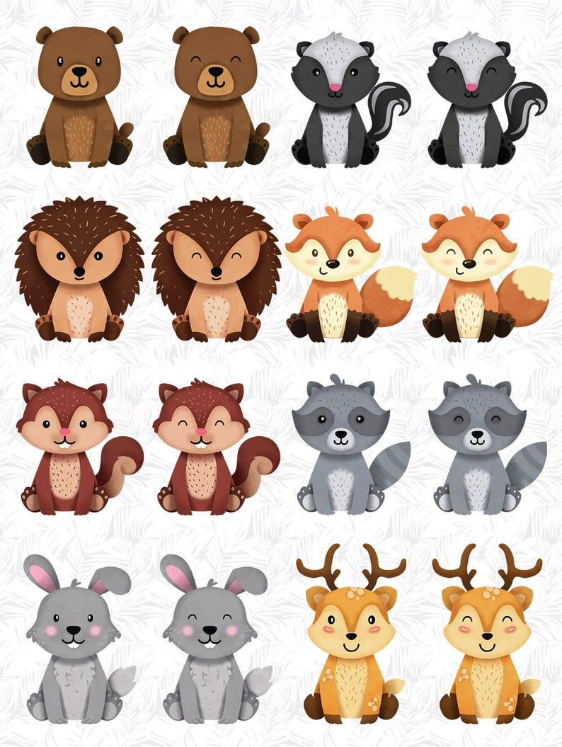 Woodland Animals Clipart Raccoon Forest Friends Sticker Etsy In 2020 Animal Clipart Woodland Clipart Woodland Animals