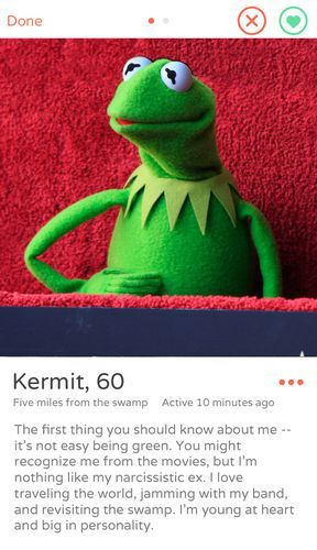 Pin On Miss Piggy And Kermie