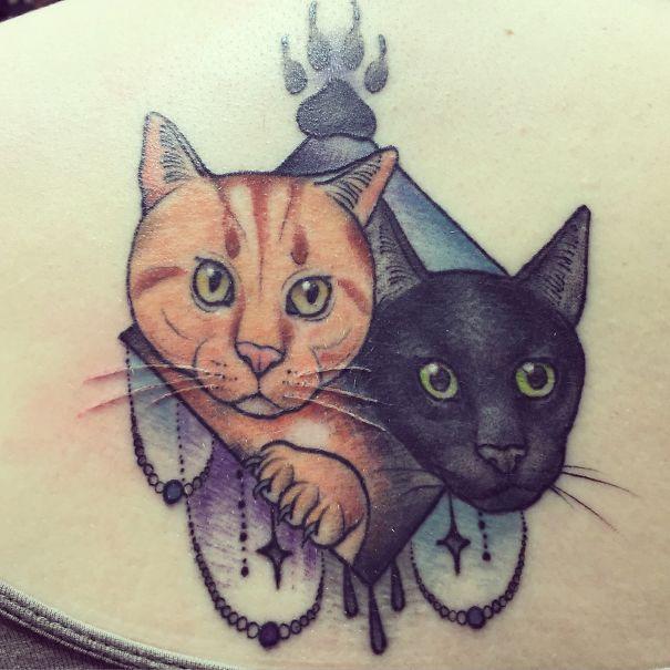 My Kitties!