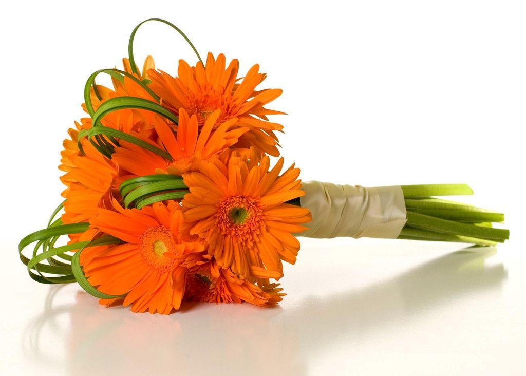 Gerbera Daisy Bouquet Orange Carnation Bouqu...