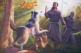 Afbeeldingsresultaat voor St Francis of Assisi photos