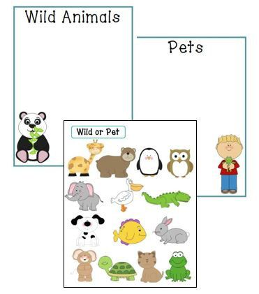 wild animal or pet sorting game school 2015 animals pets games. Black Bedroom Furniture Sets. Home Design Ideas