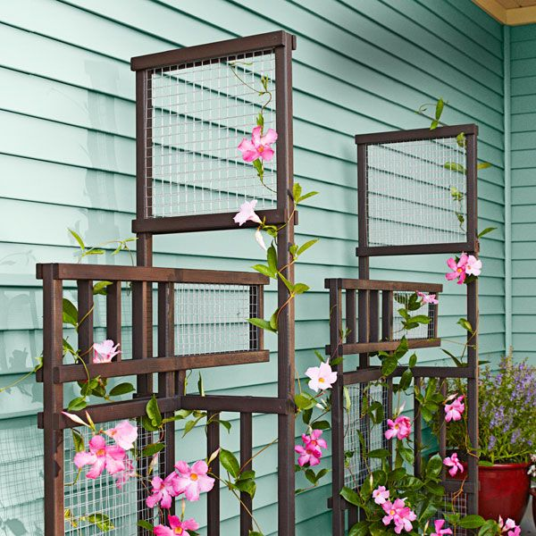 Build a trellis that becomes even more beautiful when intertwined