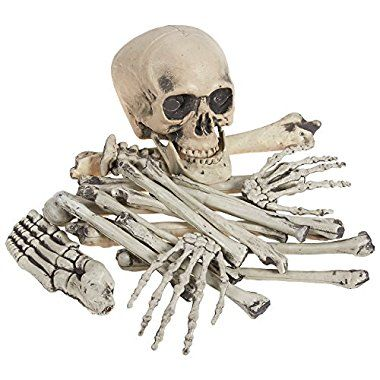 Halloween Buying 20 Piece Set of Skeleton Bones - Halloween - skull halloween decorations
