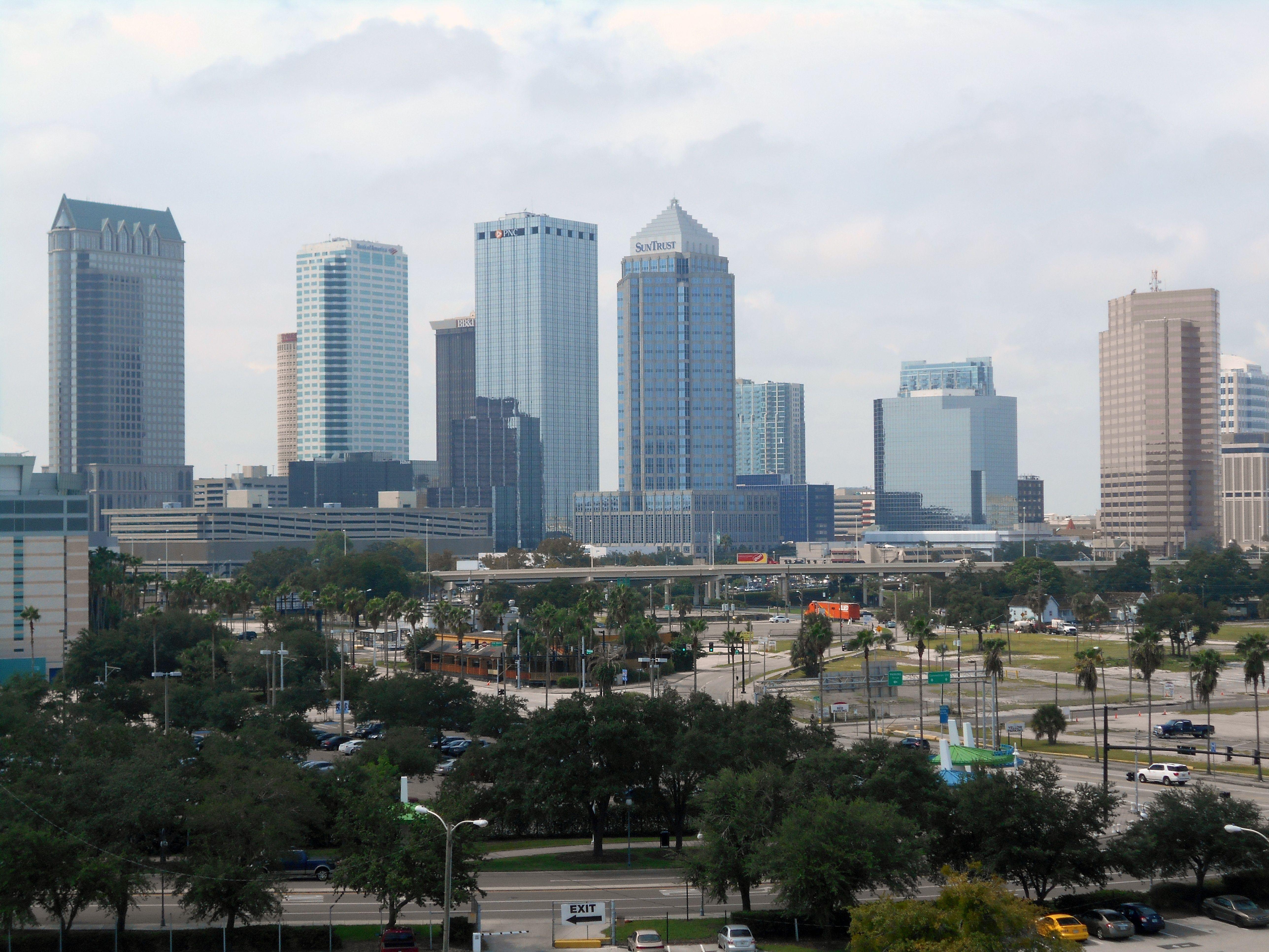 Tampa FL Leads The Way Cheap sports cars, Cheap car