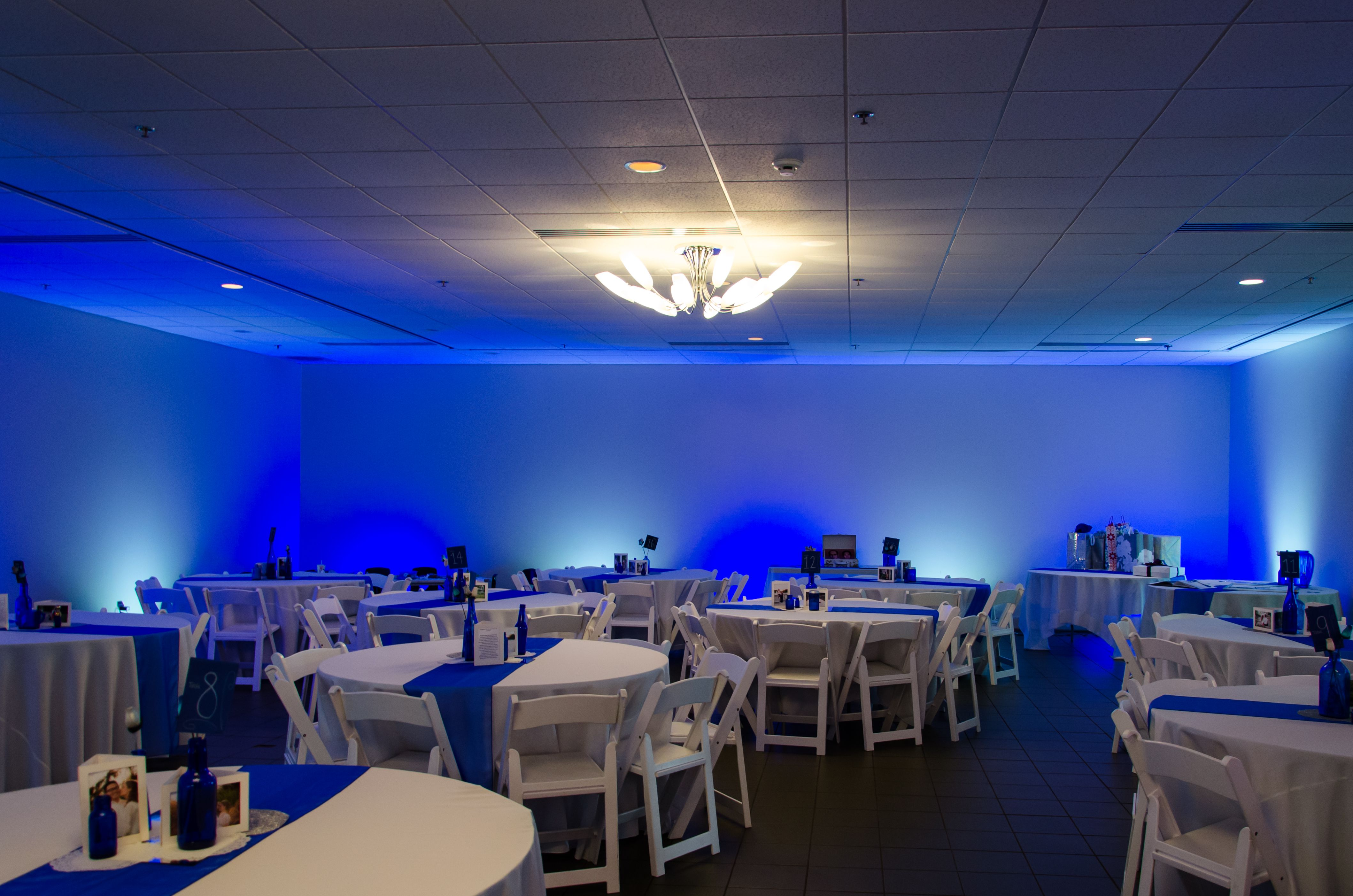 Blue And White LED Lights For Wedding Reception   Color Changing LED Flood  Lights Act As