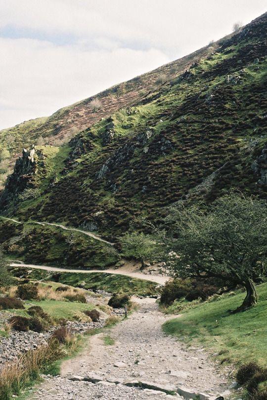 Tearing Down Doors - une colline pour toi