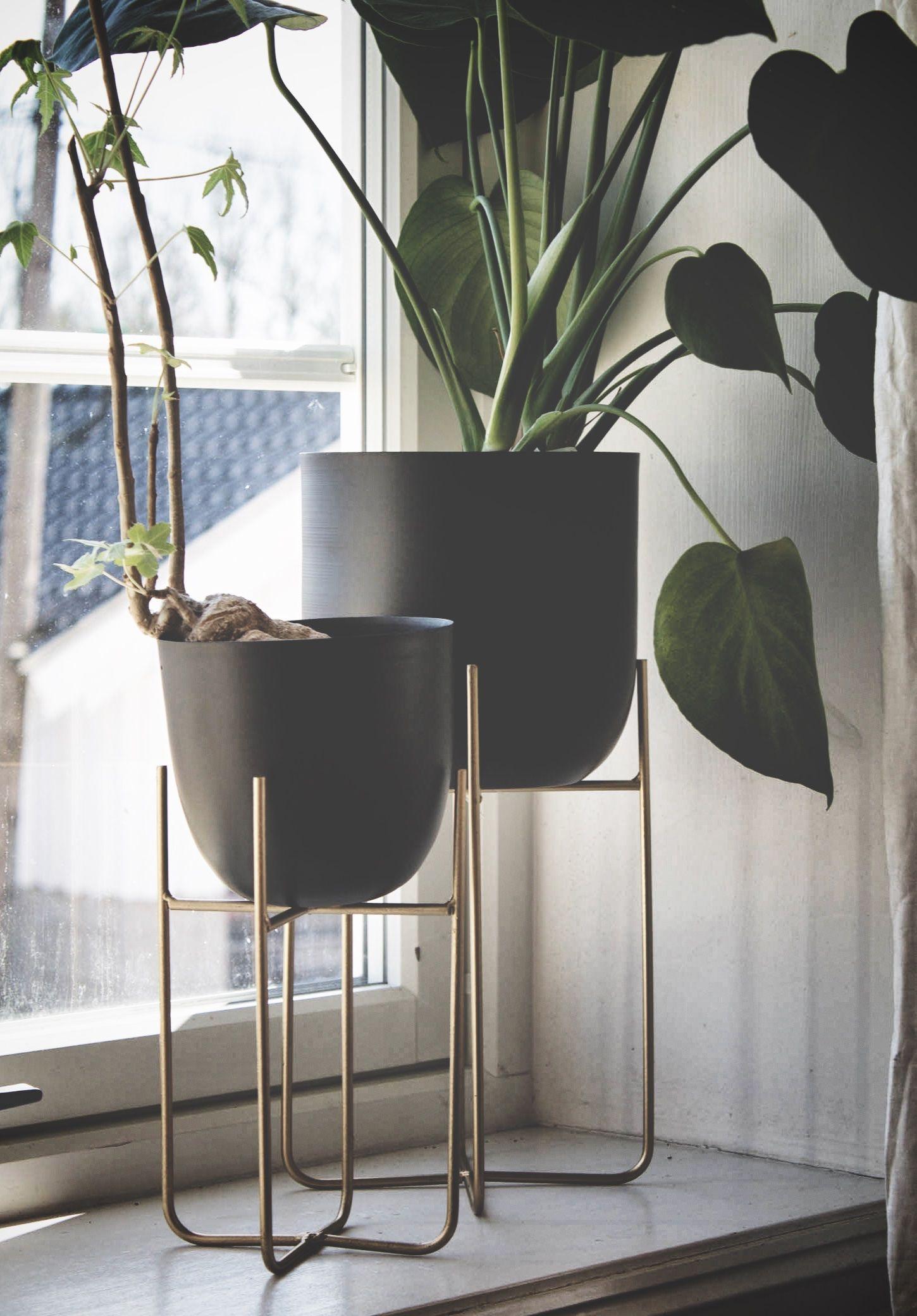Svært Sort/gull Trend Design Blomsterpotte på pidestall - Dorothea.no IV-94