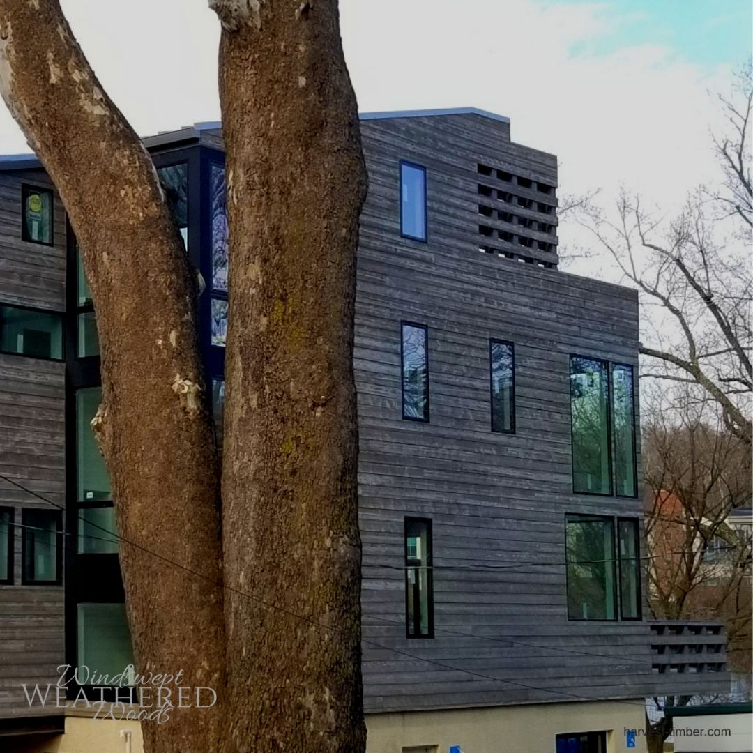 Modern Exterior Wood Siding: Clean And Modern Home With Weathered Wood Siding. Click To
