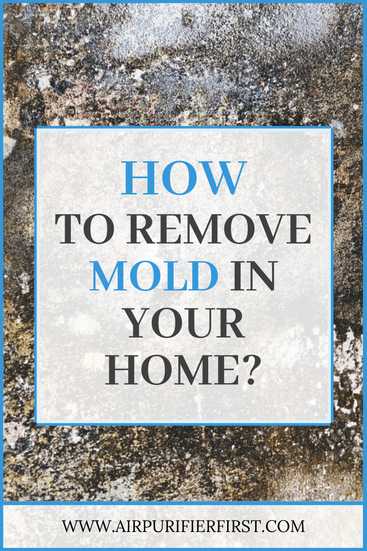 Will An Air Purifier Help With Mold? (With images) Air