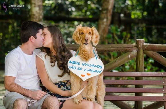 placas-save-the-date-pet