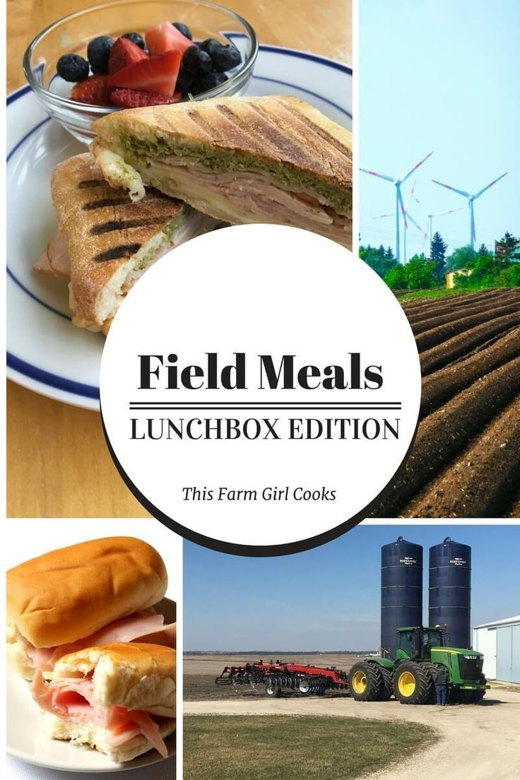Field Meals – Lunchbox Edition | No Heat No Fridge Lunches | Meal Prep No Ref…