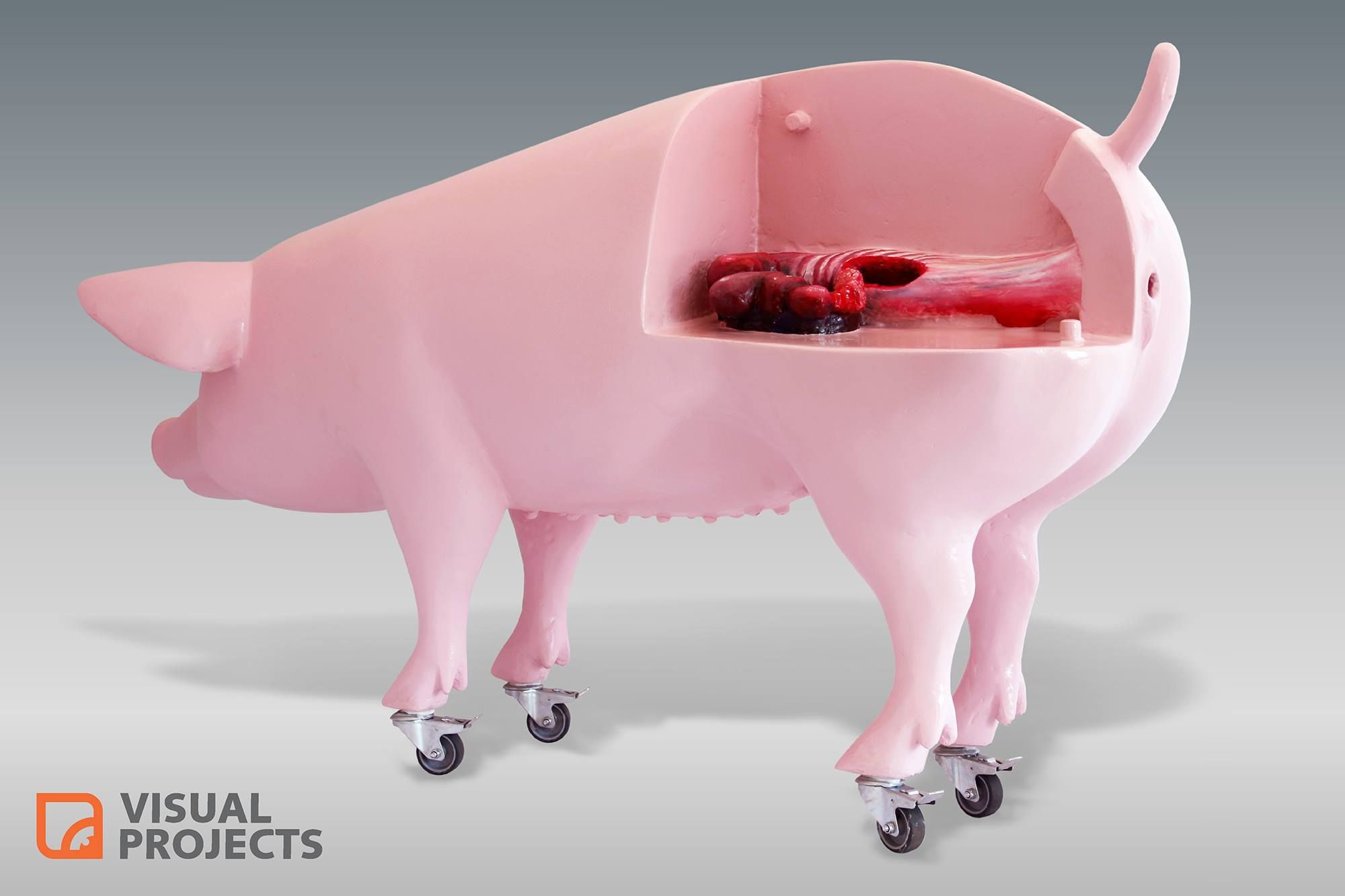 Artificial insemination ai training sow life size