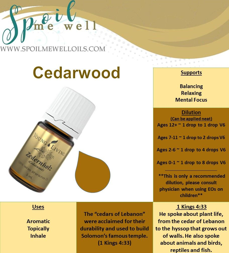 Cedarwood Essential Oil, Oils of the Bible, Young Living, Healthy living, dilution ratios