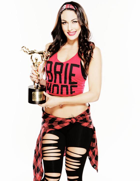 Brie Bella Brie Bella Wwe Brie Bella Flannel Tops