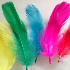Lot de 12 plumes multicolores pour créations diverses
