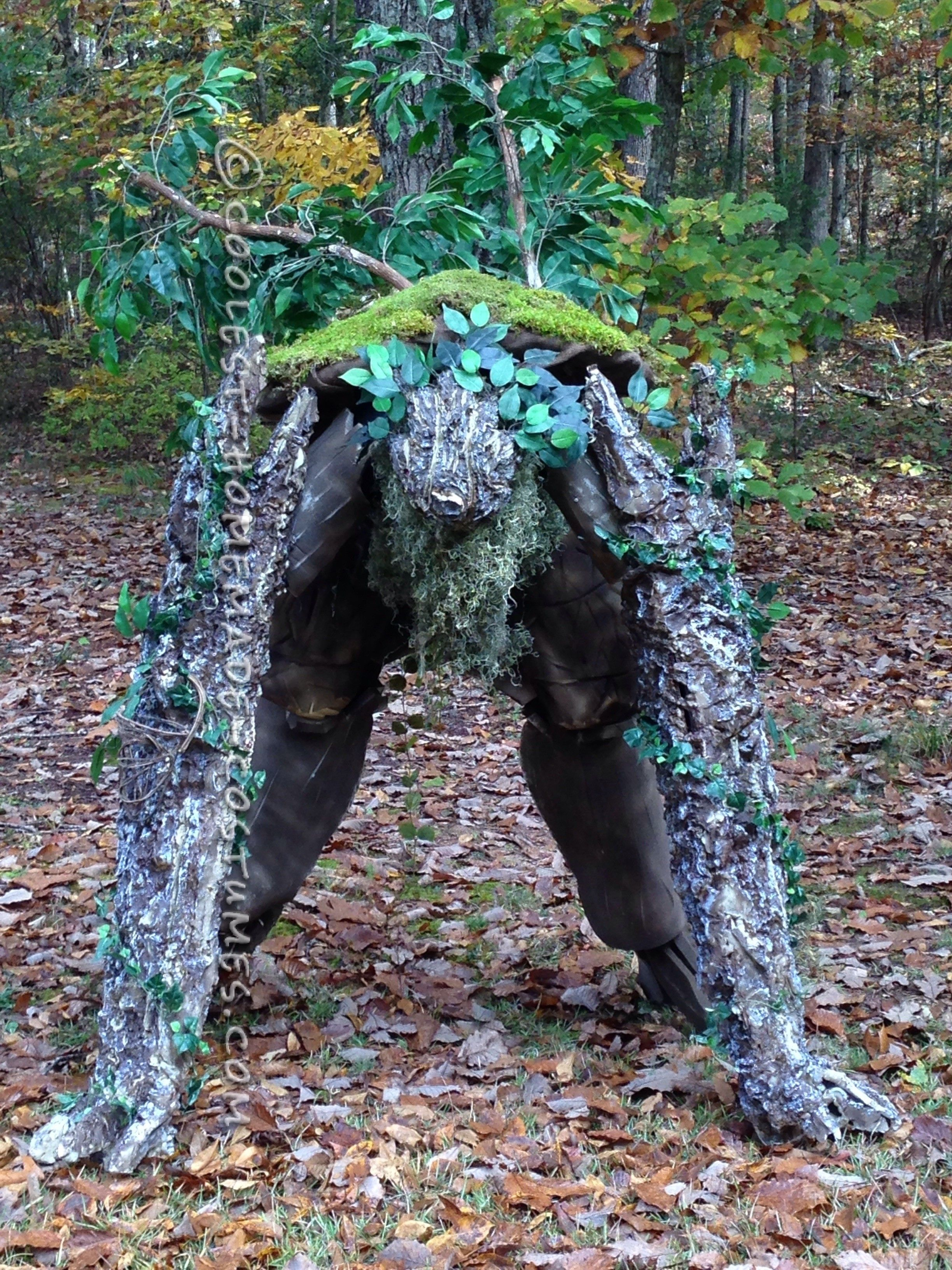 Cool diy lord of the rings tree ent tree monster costume cool diy lord of the rings tree ent tree monster costume solutioingenieria Gallery
