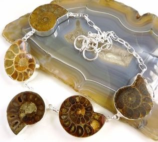 New: Ammonite Fossil and Sterling Silver Necklace