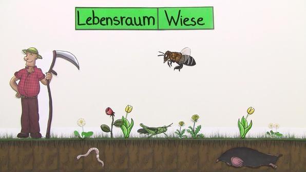 Online Lernen Grundschule