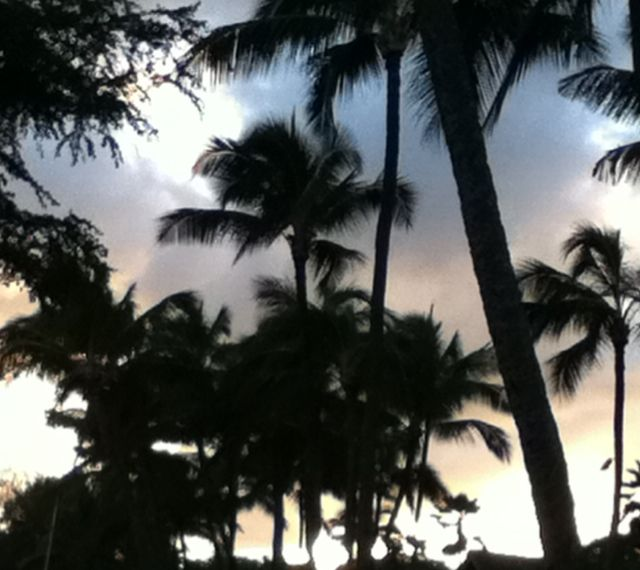 Just takes your breathe away, a hawaiian sunset. <3