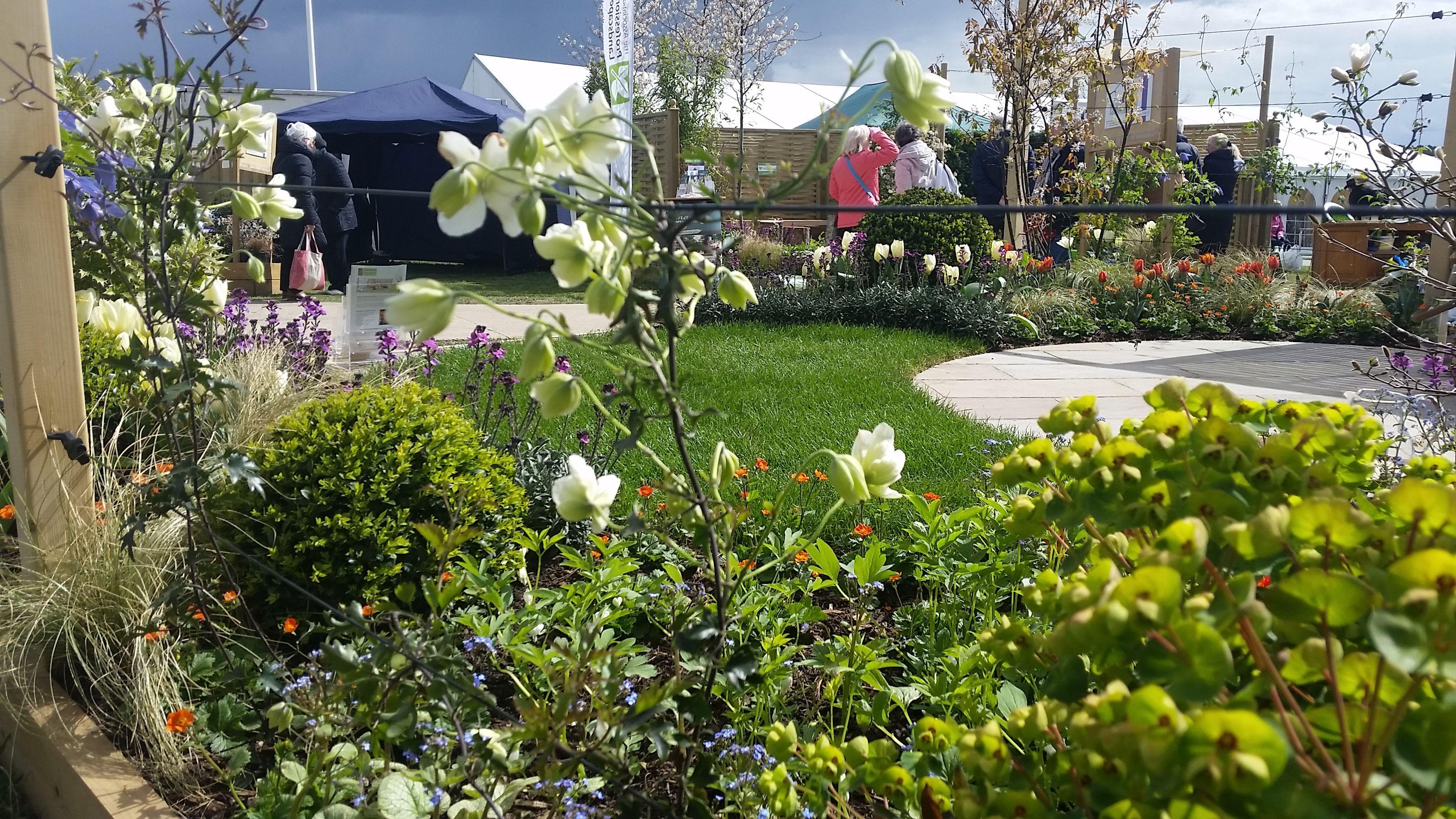 Transition Garden Silver-Gilt Medal Harrogate Spring ...
