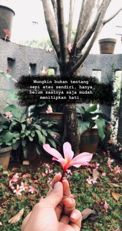 67+ ideas for quotes indonesia sendiri