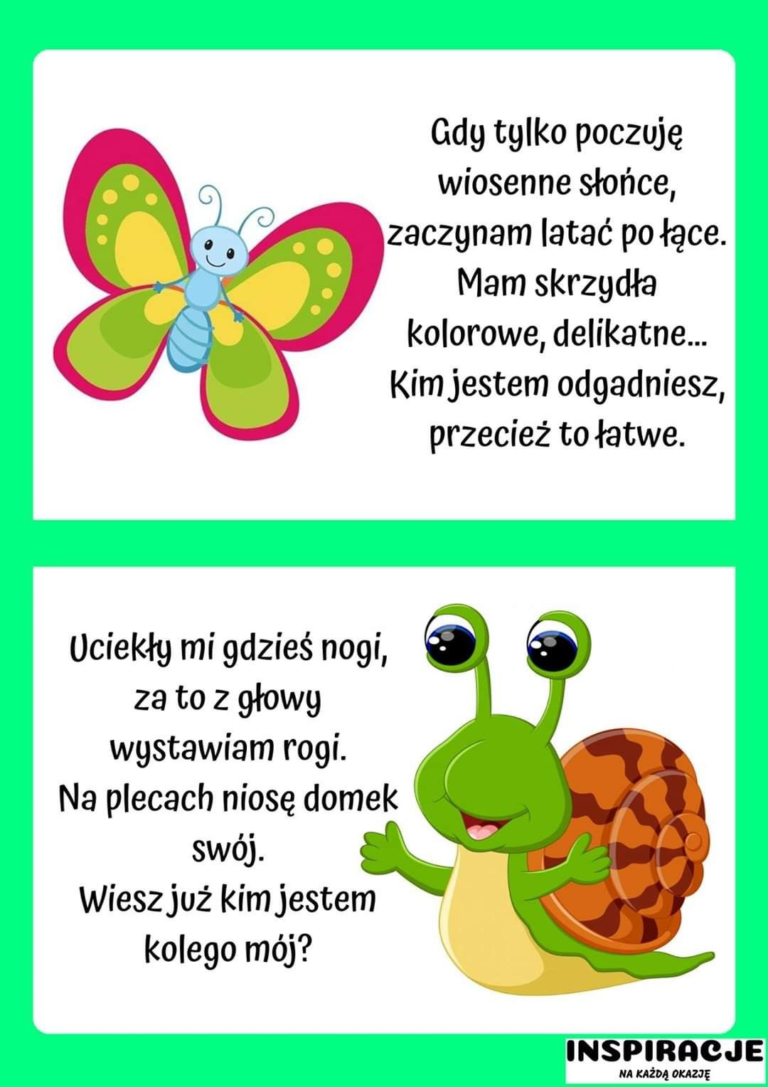 Pin By Natalia Kowalczyk On Zagadki In 2020 Kindergarden Education Kindergarten